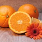 The Basics of the Orange Juice Production Process: What You Should Know for Your Supply