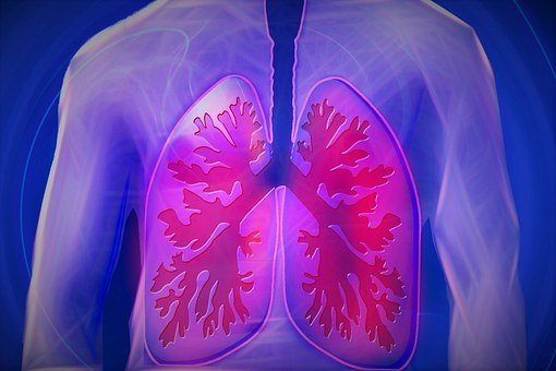pper Body, Lung, Copd, Disease, Doctor