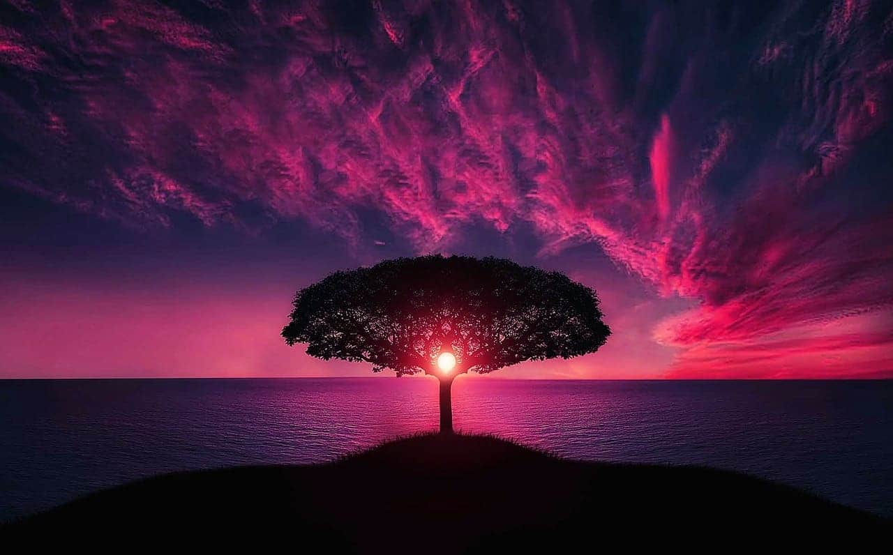 The 9 Stages of Spiritual Self-Realization ⋆ LonerWolf